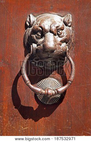 Metal Lion Door Knob