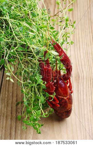 Crawfish and thyme herb on a wooden table