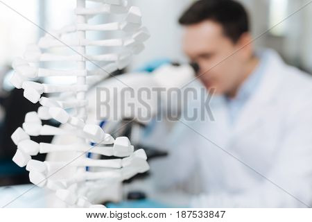 Big model. Plastic scheme of molecular standing on the table on foreground while professional man looking into ocular and testing genetic code