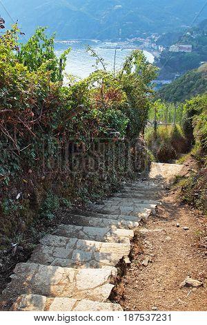 Stone Path L
