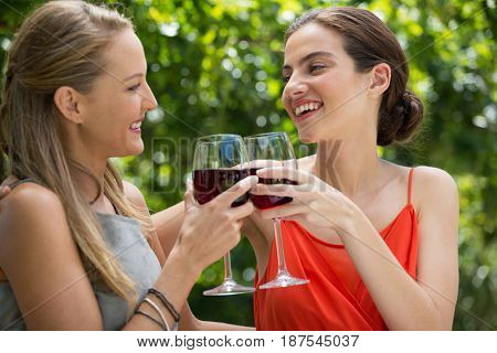 Smiling young female friends toasting red wine glasses at restaurant