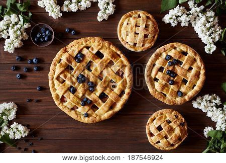 Homemade pastry apple pies bakery products on dark wooden kitchen table with raisins, cinnamon, blueberry and apples. Traditional dessert on Independence Day. Flat lay food background. Top view