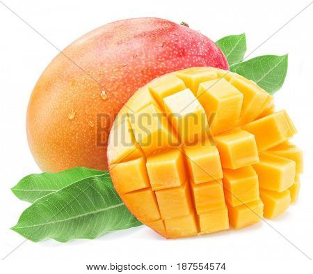 Mango fruits with water drops. Isolated on a white background.