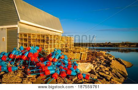 colourful lobster fishing buoys at a wharf in PEI