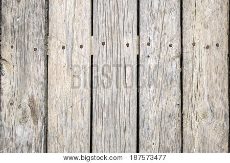 Old gray boards with prominent nail heads