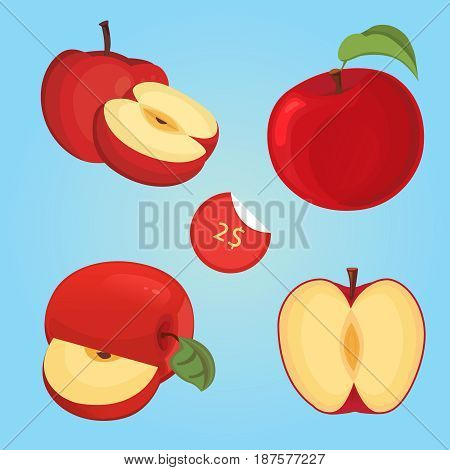 Vector illustration of apple fruit and apple slices