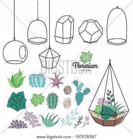 Vector glass terrariums with succulents set. Make your own florarium.
