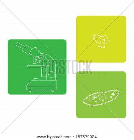 Stylized Icons Of Microscope, Amoeba, Ciliate-slipper. Laboratory Equipment Symbol.