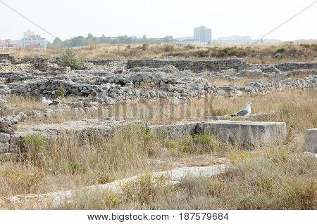 развалины древнего