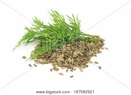 Heap dill seed with fresh dill isolated on white background