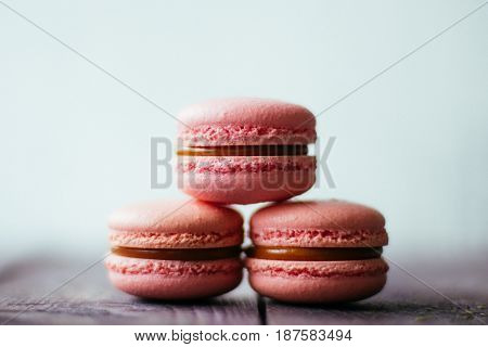 Fresh baked purple pink macaroon pastry cookies macarons, macaroni in retail store display, close up, low angle view.