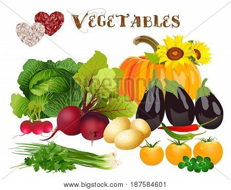 Different vegetables and hearts on a white background
