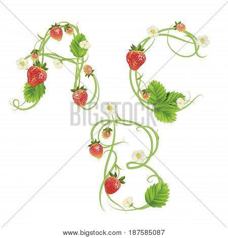 Letters A B C Strawberry font. Red Berry lettering alphabet. Vector realistic illustration ABC. Design for grocery, farmers market, tea, natural cosmetics, summer garden design element.