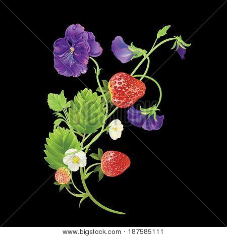 Strawberry and pansies with leaves, water drops and flowers frame. Vector realistic illustration. Design for grocery, farmers market, tea, natural cosmetics, fabric, summer garden design element.