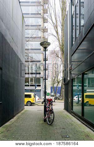 Street view of Rotterdam City Netherlands