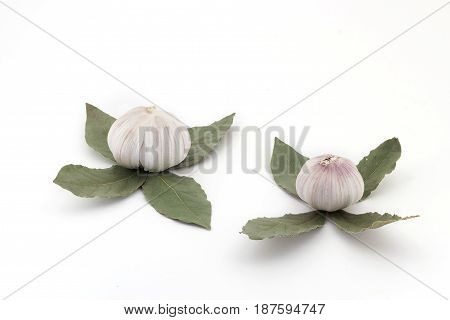 Buds Of Flowers, From Fresh Bulbs Of Garlic And A Laurel Leaf On A White Background