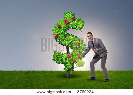 Man in sustainable investment concept