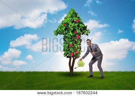 Businessman in sustainable green development concept