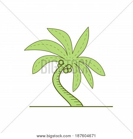 Mono line style illustration of a curved palm tree on isolated white background.