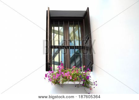Classic wooden window with Petunia pot on white wall - residential decoration