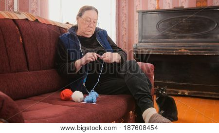 Portrait of elderly woman with glasses and clothes, who is sitting on a brown sofa and knit colored threads on the spokes. Next to the sofa Sedin black cat with yellow eyes.