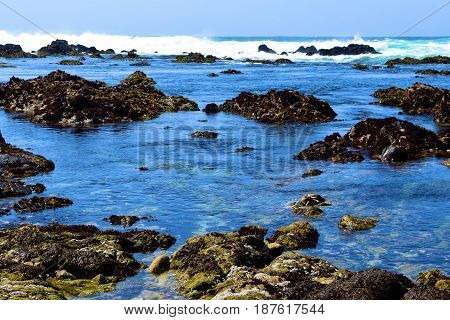 Ocean waves crashing into tide pools during high tide taken in Pacific Grove, CA