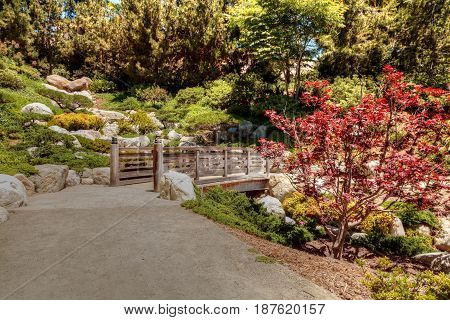 San Diego CA USA - May 20 2017: Tranquil Japanese Friendship Garden at the Balboa Park in San Diego. Editorial use.