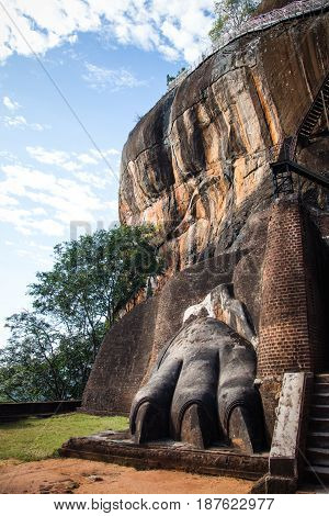 One of the giant paws decorating the gate to Sigiriya fortress at the top of Lion's rock Sri Lanka.