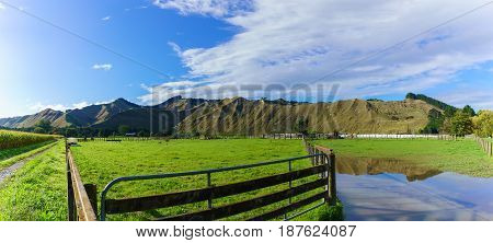Panoramic image of countryside in Whanganui North Island of New Zealand