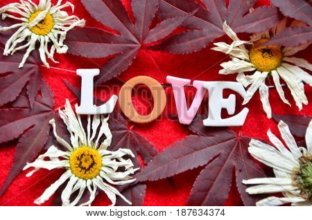 word love on a  abstract colorful, background