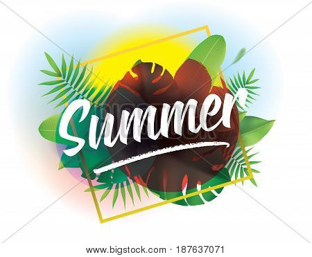 Summer time. Vector background with typography for posters and banners. Illustration with tropical leaves and sun.