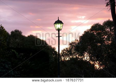 Australian suburban sunset orange sky with gum tree silhouette Narnian Narnia lamp post