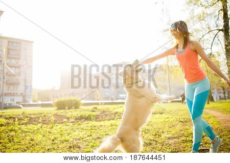 Brunette playing with dog with stick on green grass at background of houses