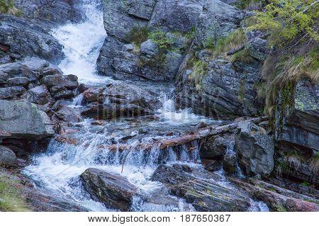 wild mountain stream with cascades and debris in switzerland
