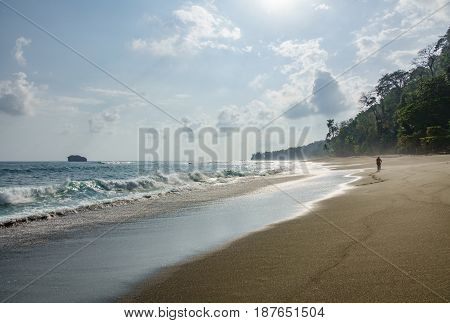 Tourist walking in Corcovado National Park beach and forest, Osa Peninsula, Costa Rica