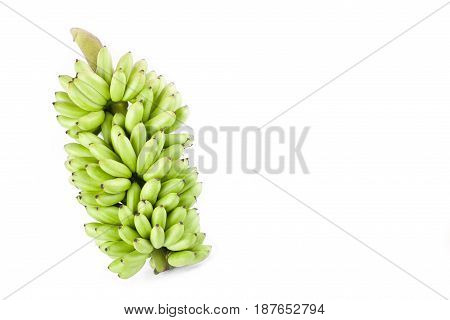 bundle of raw egg bananas  on white background healthy Pisang Mas Banana fruit food isolated
