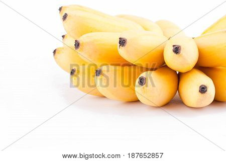 yellow  egg banana or  hand of ripe  golden bananas   on white background healthy Pisang Mas Banana fruit food isolated