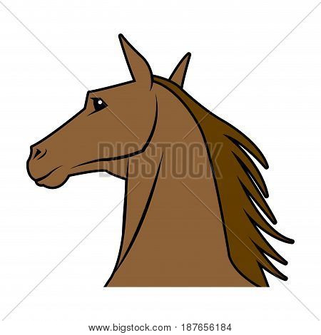 head horse animal equine wild image vector illustration