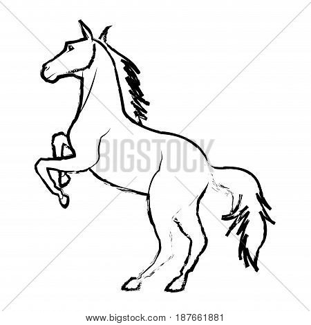 horse on two legs mammal equine wild vector illustration