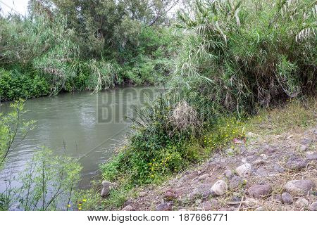 The Jordan River the bushes growing along the banks of the river Israel