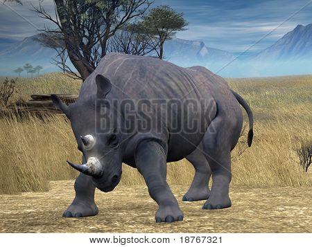 black rhino in savanna poster