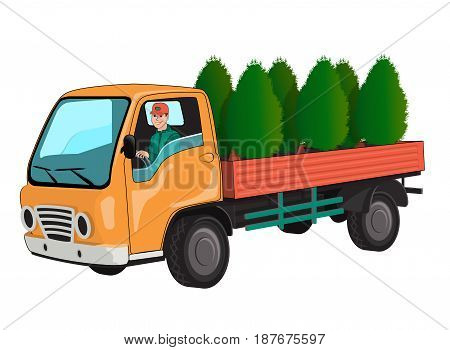 Truck with thuja. Isolated on white background.