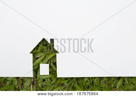 Green house concept. paper house on fresh grass land.