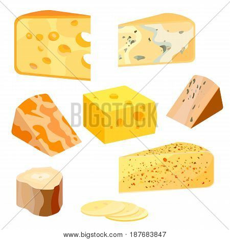 Cheese types. Modern flat style realistic illustration icons isolated on white background. Graphic illustration