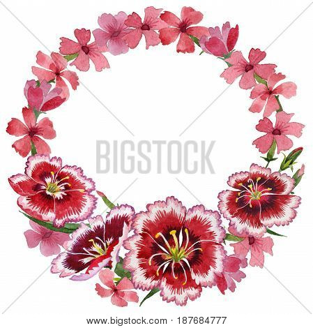 Wildflower carnation flower wreath in a watercolor style isolated. Full name of the plant: carnation garden. Aquarelle wild flower for background, texture, wrapper pattern, frame or border.