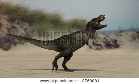 tyrannosaurus on beach poster