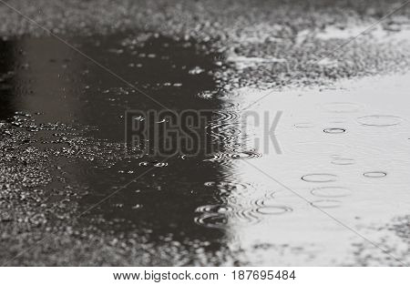 water puddle with light and dark contrast and water droplet rings in light rain