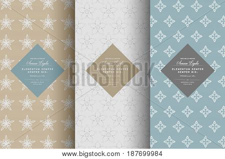 Vector set of design elements pattern for chocolate and cocoa packaging with typography labels and background, wallpaper in trendy linear style. Pattern for cafe, sweet-shop, pastry shop