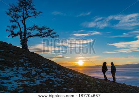 Silhouette scene of sacred tree at Cape Burkhan on Olkhon Island in Lake Baikal at sunset