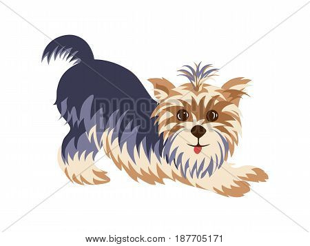 Yorkshire Terrier in a funny pose hand drawn painted cartoon. Purebred cute character in a flat style isolated on a white background.